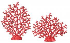 19801 Red Coral Sculpture Set/2