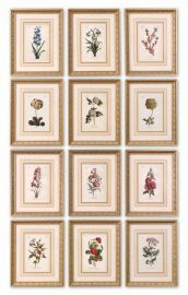 33493 Flower Of The Month Floral Art Set/12