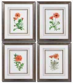 33588 Orange Flowers Art I, II, III, IV, Set/4