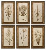 41151 Wheat Grass Framed Art Set/6