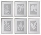 41394 Moonlight Ferns Framed Art, S/6