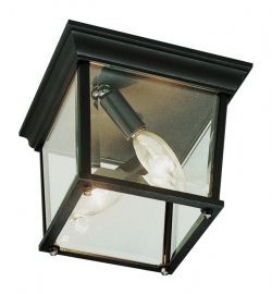 "Cubed 9 1/4"" Wide Outdoor Ceiling Light In Black"