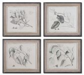 51073 Sepia Leaf Study Wall Art, Set/4