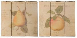 51080 French Fruit Wall Art, S/2