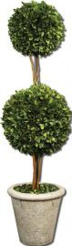 60106 Two Sphere Topiary Preserved Boxwood
