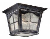 "Arcadia 11"" Outdoor Ceiling Light Burnished Patina"