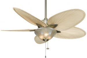 Windpointe Antique Brass Ceiling Fan, Light Kit And Frosted Tropical Glass Bowl