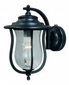 "Corsica 8-1/2"" Outdoor Wall Light Oil Rubbed Bronze"